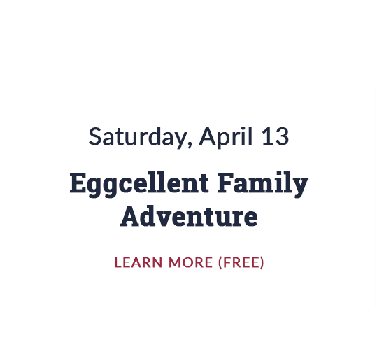 Eggcellent Family Adventure